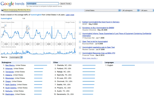 google trends hummingbird search